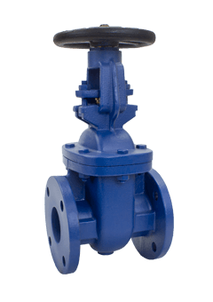 Class 125 Rising Stem Cast Iron Gate Valve from NCI Canada Image