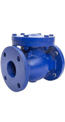 Class 125 Cast Iron Swing Check Valve from NCI Canada Image