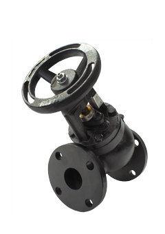 Class 125 Cast Iron Triple Duty Valve from SSI Image